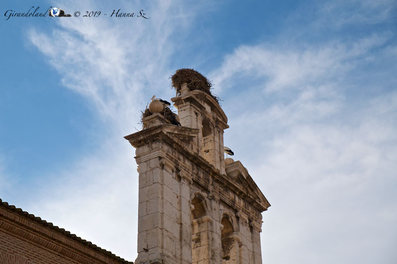 Alcalà de Henares