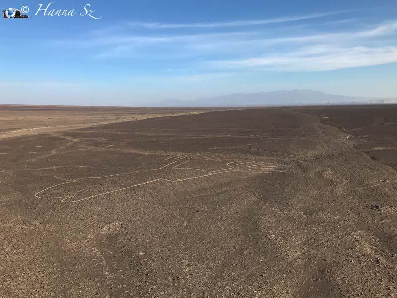 linee di Nazca Mani