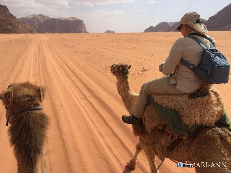 Wadi RumIMG_3598
