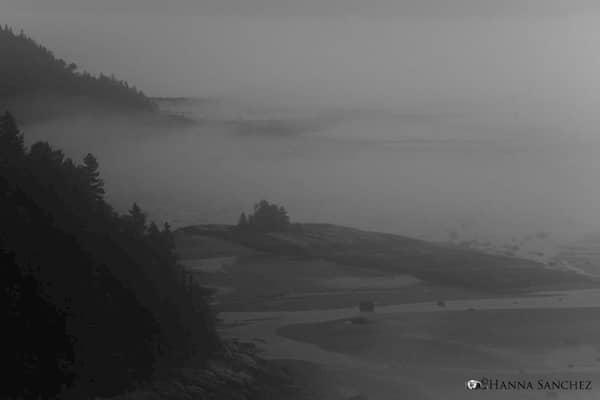 Tadoussac con la nebbia